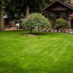 BZ Built - Home Renovation - golf green turf - putting green - Langley - Surrey-0330