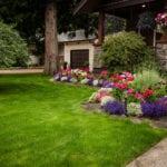 BZ Built - Home Renovation - golf green turf - putting green - Langley - Surrey-0332