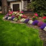 BZ Built - Home Renovation - golf green turf - putting green - Langley - Surrey-0335