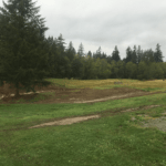 bz-built-langley-construction-renovation-pond-08