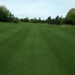 bz-built-langley-construction-grass